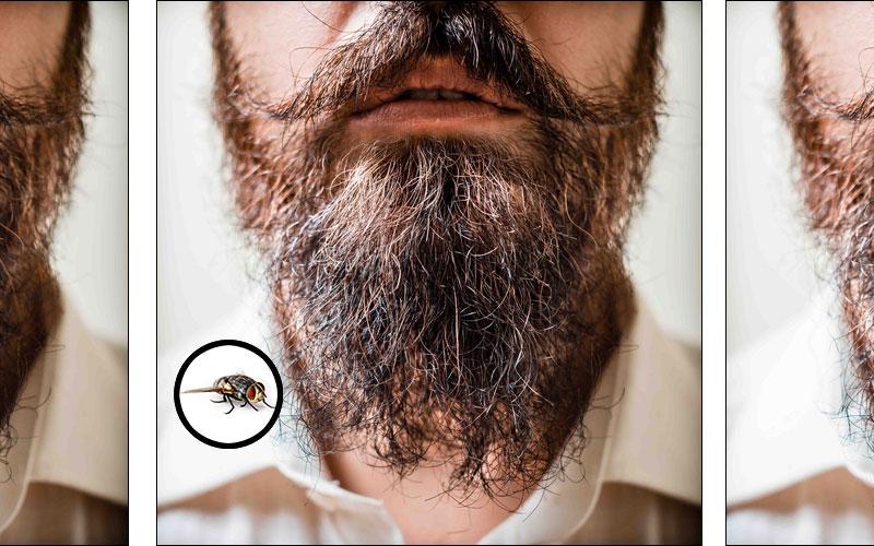 barba-cut-800