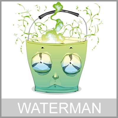 Horoscoop waterman