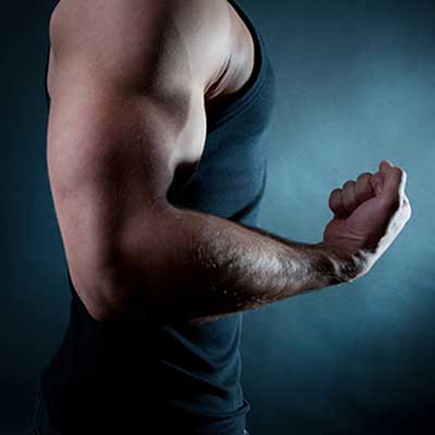Biceps trainen.