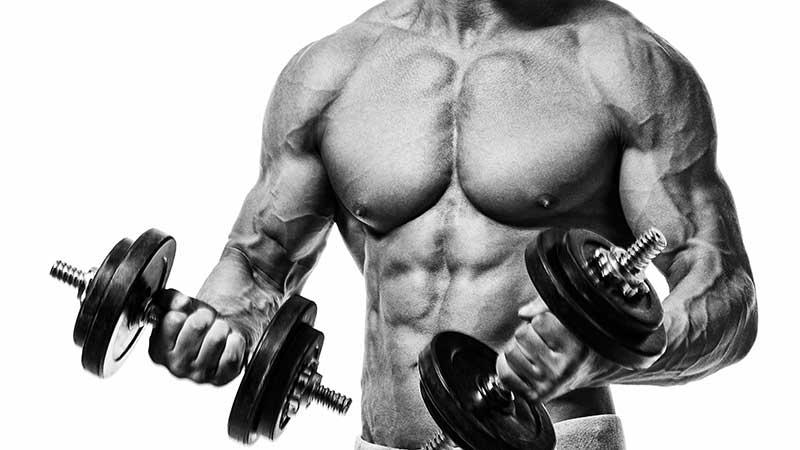 Eiwitten en krachttraining. Hoeveel proteïnen voor een optimale spieropbouw?