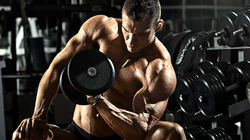 Biceps trainen, bicepsoefeningen