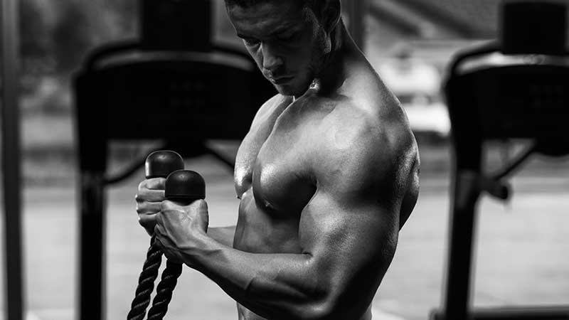 Zo train je je biceps groot en sexy