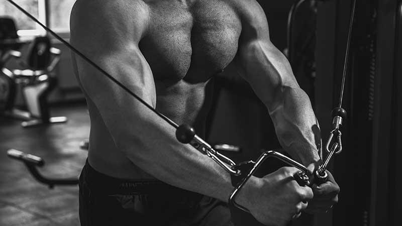 Trainingsschema voor het ontwikkelen van spiermassa?